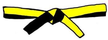 yellow_one_belt